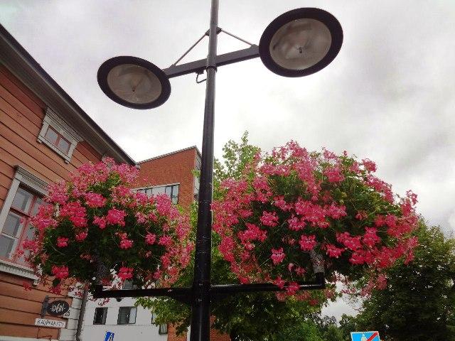 Финляндия. Лаппеенранта. Цветочные композиции на улицах