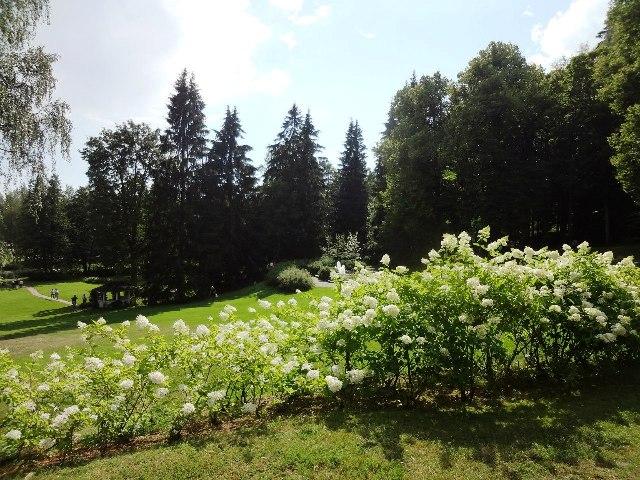Финляндия. Вилла Хайкко_3