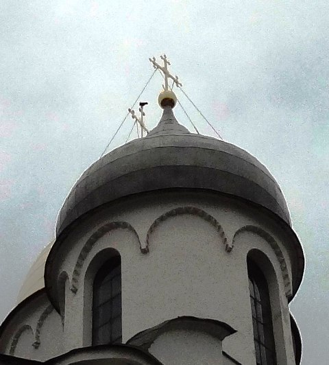Великий Новгород. Голубь на кресте Софийского собора