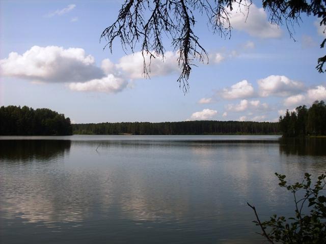 Щучье озеро. Комарово