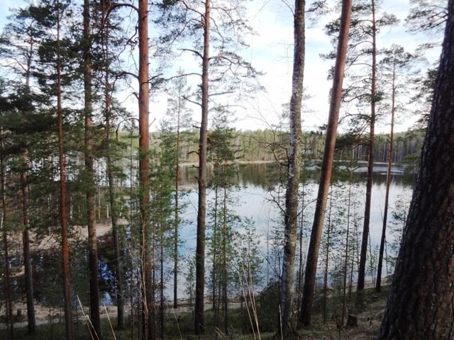 Финляндия. Пункахарью_2