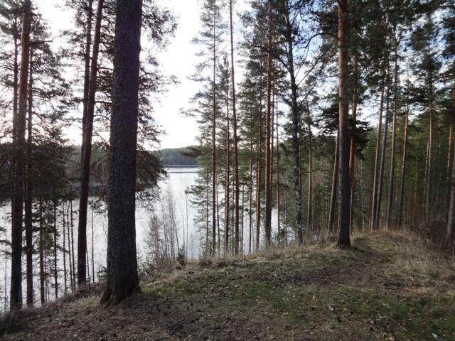 Финляндия. Пункахарью_3