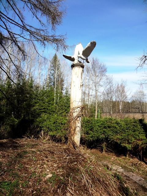 Финляндия. Париккала. Мистический лес Patsaspuisto_33