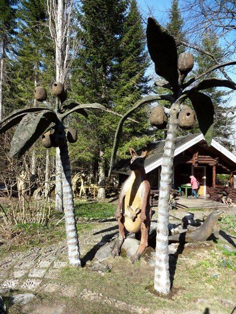 Финляндия. Париккала. Мистический лес Patsaspuisto_43