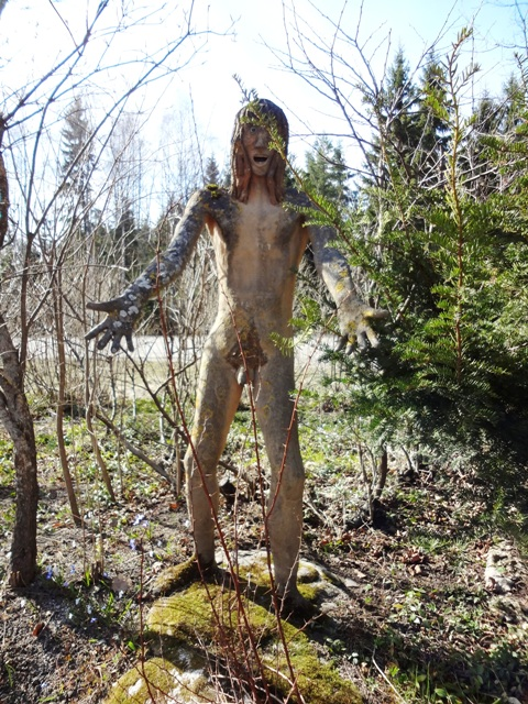 Финляндия. Париккала. Мистический лес Patsaspuisto_52