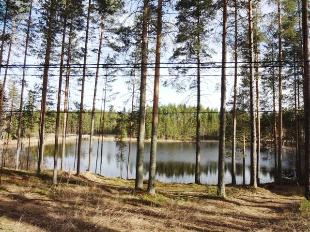 Финляндия. Линия Салпа_8