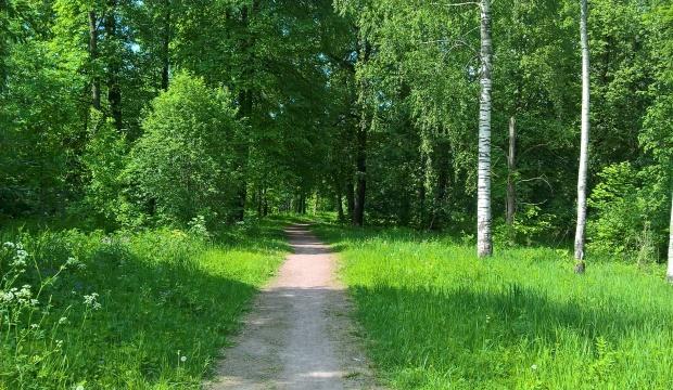 babolovsky park_1
