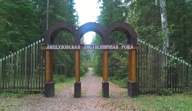 lindulovskaya-roshha_10