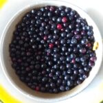 Желе из черноплодной рябины